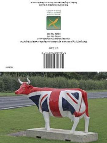 UK  Cow