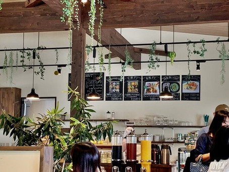 福井県に遊びに行こうvol.10『お野菜中心のヘルシーなランチ「ベジヤード」』