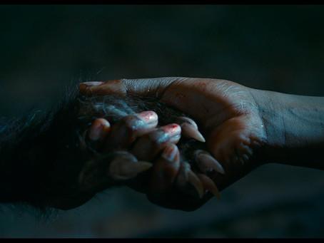 Crítica: 'As Boas Maneiras' é estranho, é ousado e é um filmaço