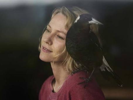 Crítica: 'Penguin Bloom', com Naomi Watts, é filme emocionante, mas que não decide tom