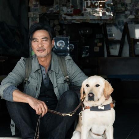 Crítica: 'Eternos Companheiros' é filme chinês leve e óbvio