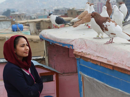 Crítica: 'Hava, Maryam, Ayesha' é bom filme do Afeganistão