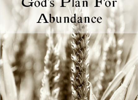 God's Plan for Abundance Volume 1