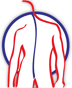 logo_spriestersbach_blaurot.png