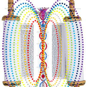 The Torah / Torus
