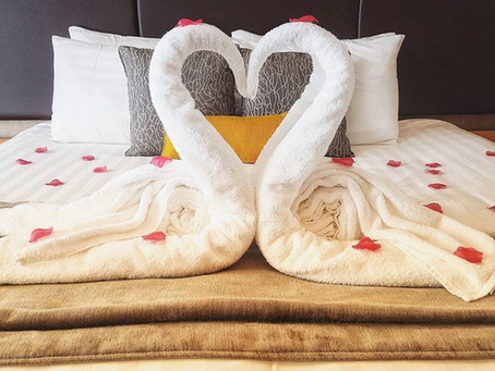 How To Fold Towel Animals at Home Like a Luxury Hotel