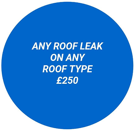 ANY ROOF LEAK ON ANY ROOF TYPE