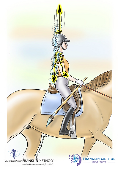 franklin rider water.png