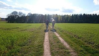 kosten paardrijles, wat kost een paardrijles, paardrijles gelderland, aanbod paardrijden kosten