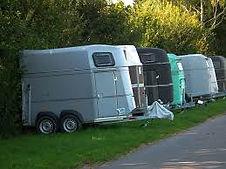 trailer laden probleem, trailerladen, cursus trailer laden, paard in trailer, moeilijk paard, trailer laden gelderland