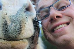 natural horsemanship boek, natural horsemanship cursus, natural horsemanship lessen gelderland, natural horsemanship paardenfluisteraar