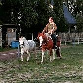 paardrijles, paardrijles gelderland, aanbod paardrijles, kosten paardrijles, leren paardrijden kinderen