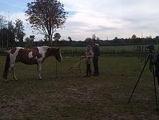 rechtrichten paard, moeilijk paard, natural horsemanship, natural horsemanship cursus gelderland, paardrijles