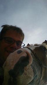 dislaimer, natural horsemanship gelderland, natural horsemanship cursus gelderland, natural horsemanship lessen gelderland