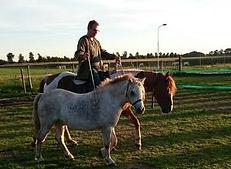 leren paardrijden, paardrijles-aanbod paardrijles, natural horsemanship lessen, natural horsemanship cursus, paardrijles managers