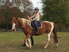 paardrijles kinderen, aanbod paardrijles, natural horsemanship lessen, natural horsemanship cursus gelderland