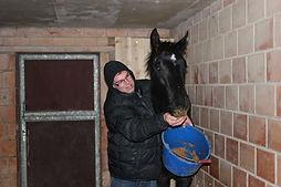 moeilijk paard, natural horsemanship cursus gelderland, natural horsemanship lessen, paardenfluisteraar