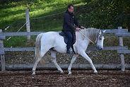 Contactpagina-natural-horsemanship-lessen-gelderland-paardrijles-kinderen-cursus-leidinggeven
