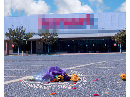 Smol Data- Inconvenience Store (Album Review)
