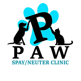 PPAW-new-logo-teal.png