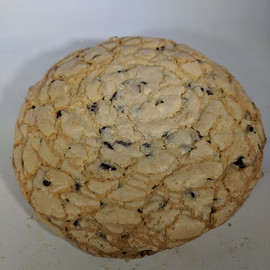 Large Chocolate Chip