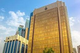 Central Bank Digital Currencies: An Analytical Framework for Arab Central Banks