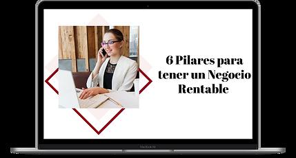 Clase Negocio.png