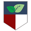 LSTO Shield (1).png