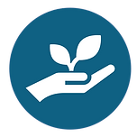 EA Inclusion - Sustainability
