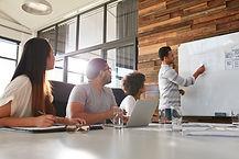 EA Inclusion - Capability Study & Skills Audit