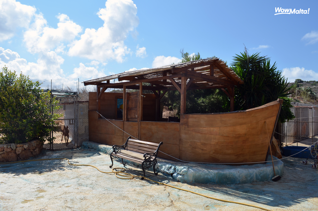 Noah's Ark Dog Sanctuary