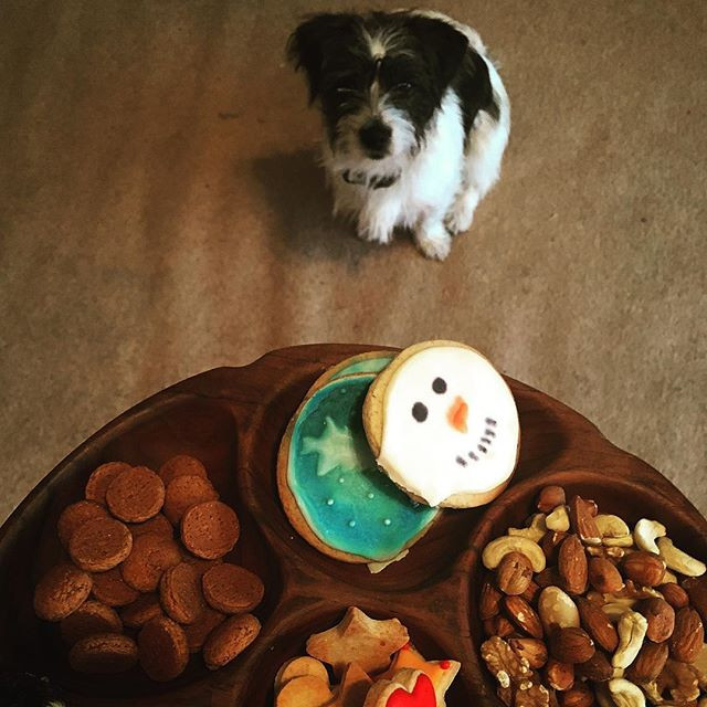 christmas cookie recipes - doggy