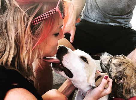 The 5 Best Things About Dating a Dog Lover