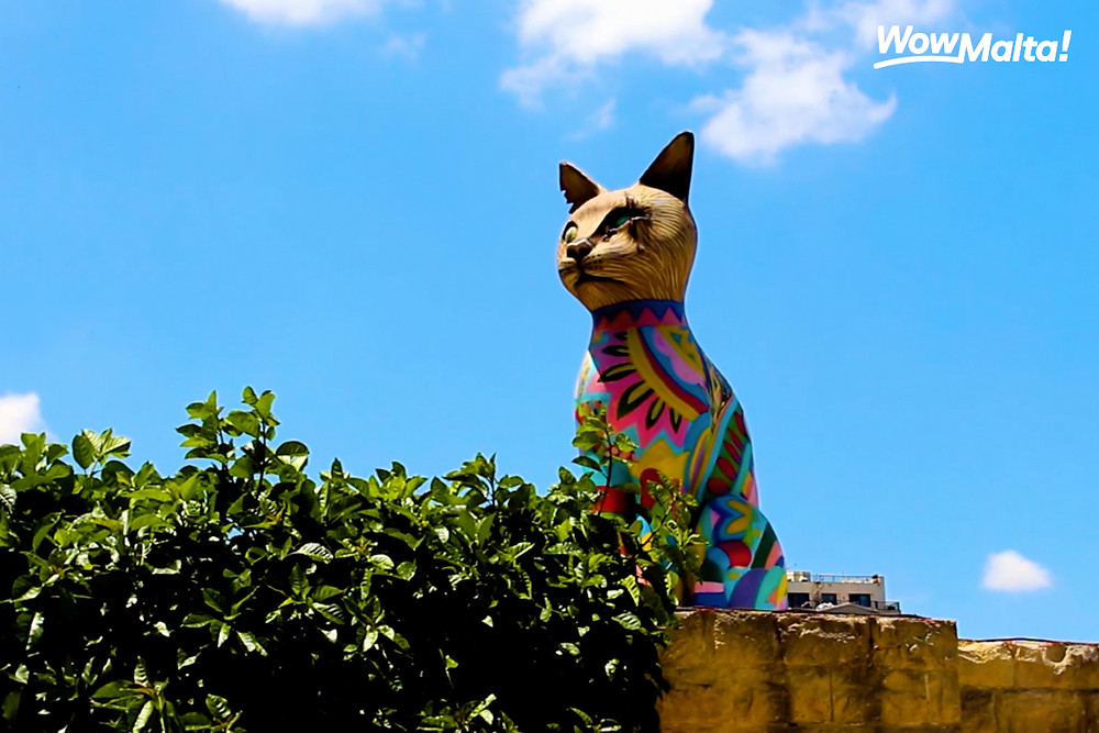 Sliema Cat Village