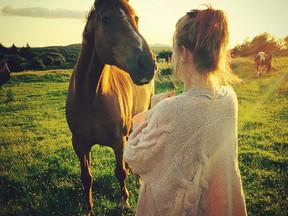 What Makes Horses So Wonderful?