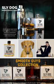SLY DOG Andy Bay.jpg