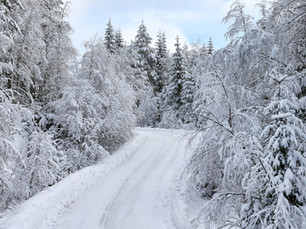 CHASING SUCCESS ON SWEDEN'S SNOW STAGES