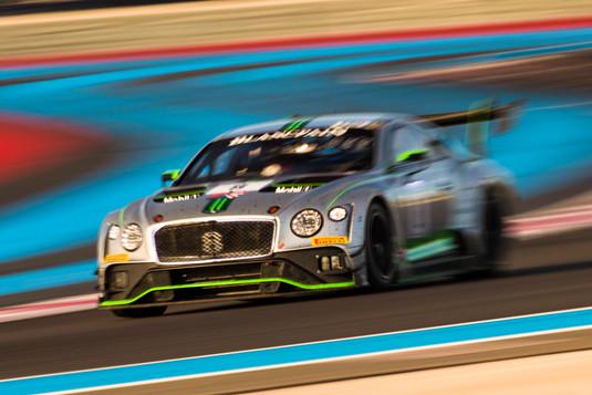 Bentley (5).jpg