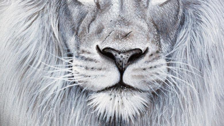 'Male Lion' (30 x 21 cm)