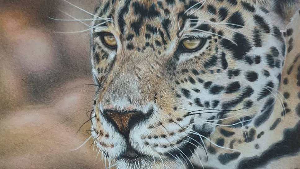 'Wild Thoughts' Donated to Explorers Against Extinction