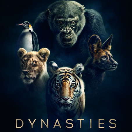 when-is-dynasties-on-bbc