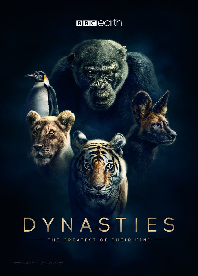 dynasties sir david attenborough