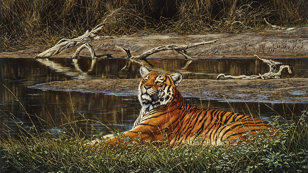 bengal tiger print