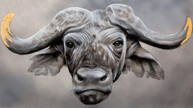 'Cape Buffalo' by Anthony Walker (30 x 21 cm)