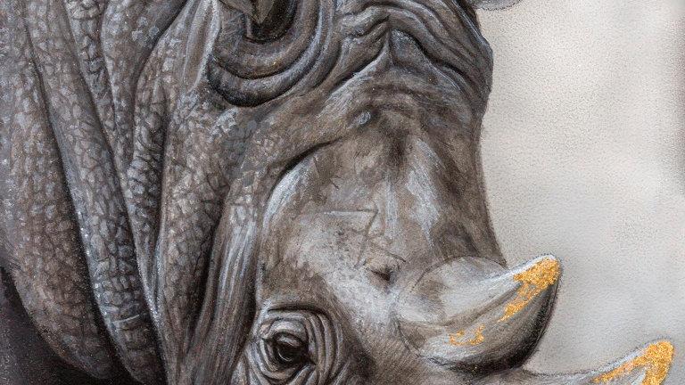 'White Rhino' (30 x 21 cm)