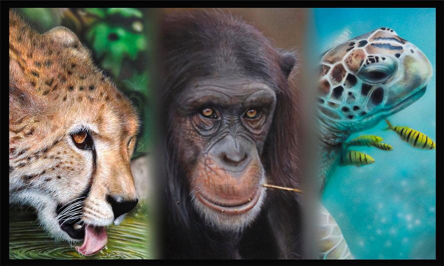 3 animals 50pc.jpg