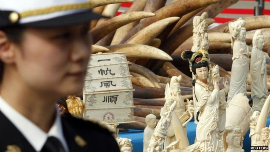 chinese ivory market