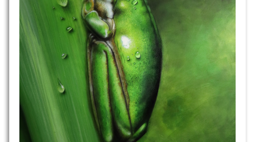 'Morning Dew' - by Anthony Walker (120 X 100 cm)