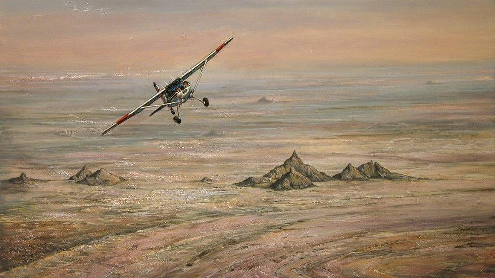 'Sahara Flight' Canvas Print by Larry Norton