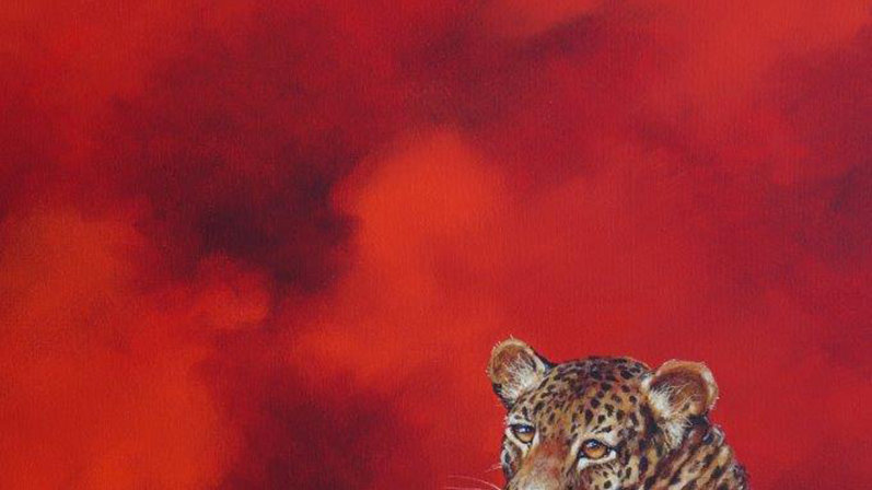 """Hot Cat : 39.5"""" x 27.5"""""""